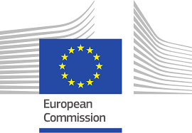 European Commision – statement on the Council Declaration on the ...